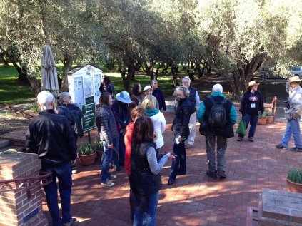 The volunteers gather for pruning demonstrations after lunch.