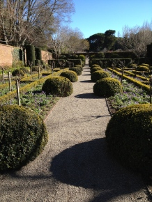 Some awesome boxwood topiary balls in the panel gardens.